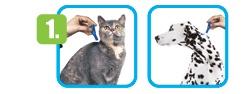 Pipetas para gato Frontline